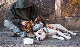 W tych miastach żyje najwięcej bezdomnych