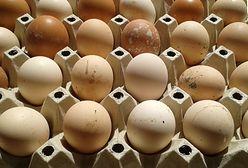 Duże sieci pizzerii wycofują jajka z chowu klatkowego