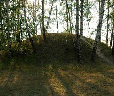 Odkryto kilkadziesiąt kurhanów sprzed ponad 2 tys. lat