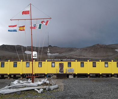 Budynek główny stacji