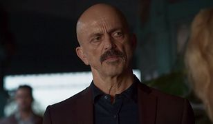 Jacek Koman jako Gregori Stolin