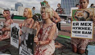 Czterech obrońców środowiska ginie każdego tygodnia.