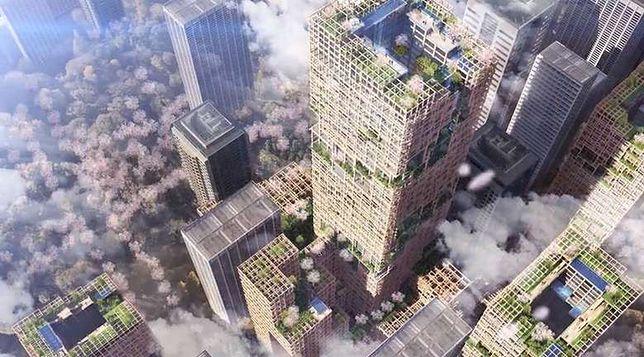 Japończycy chcą stworzyć więcej zieleni w centrum miasta