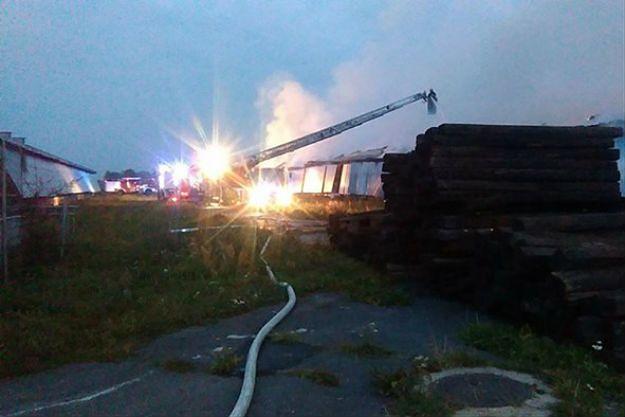Pożar fermy drobiu na Dolnym Śląsku