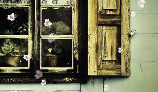 Małgorzata Oliwia Sobczak łączy w swoich utworach nurt egzystencjalny z realizmem magicznym.
