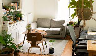 Na home staging mieszkania o powierzchni ok. 50 mkw. trzeba przeznaczyć 4-7 tys. zł.