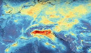 Ekologiczny koniec świata. Naukowcy ostrzegają przed niebezpieczeństwem