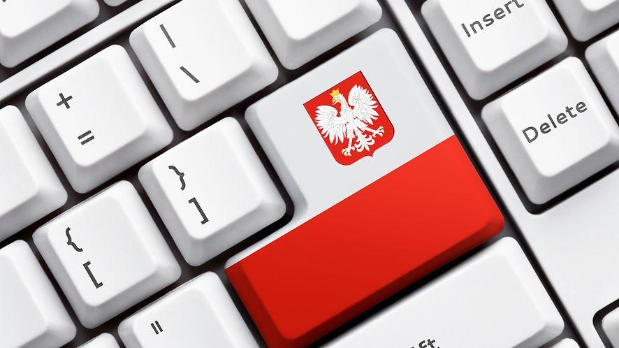 Raport MAiC: Polacy lubią e-administrację