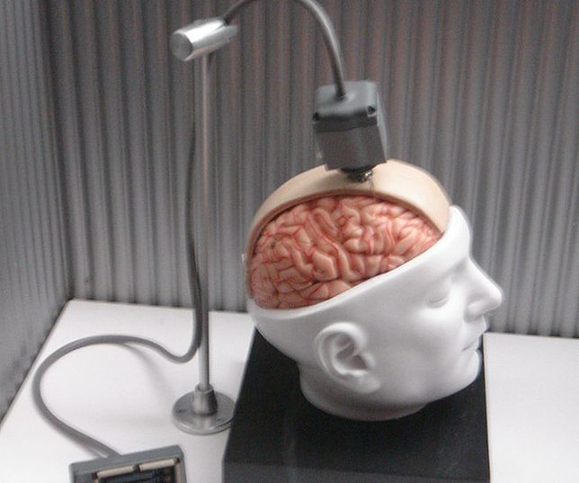 Amerykanie chcą połączyć ludzki mózg z komputerem