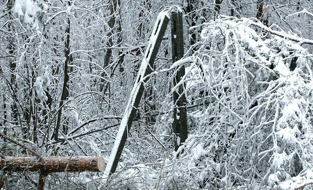 Podkarpacie. Śnieg uszkodził linie energetyczne. 40 tys. gospodarstw bez prądu