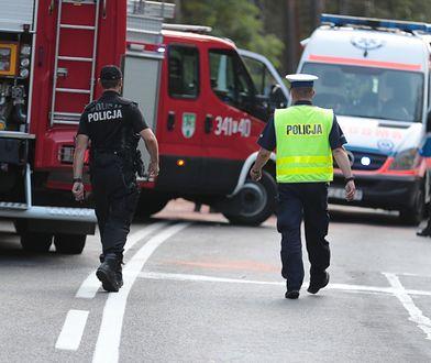 Dąbrowa. Policja wyjaśnia okoliczności zderzenia trzech ciężarówek (zdj. ilustracyjne)