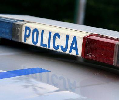 Warszawa. Na Białołęce podczas rozładunku ciężarówki znaleziono zwłoki