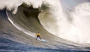Pierwsza edycja targów Surf Market