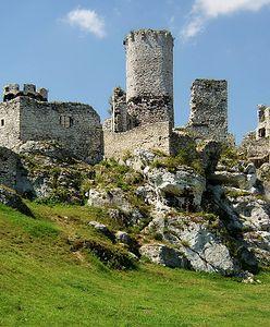 Jura Krakowsko-Częstochowska. Zamki, ruiny i jaskinie