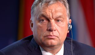 Powołano pełnomocnika rządu Węgier ws. Zakarpacia. Ukraina grozi zakazem wjazdu