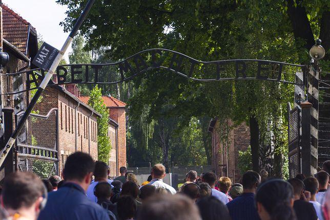 Auschwitz tylko dla polskich przewodników z licencją IPN. To pomysł małopolskiej kurator oświaty