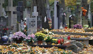 """Obostrzenia na cmentarzach? """"Osoby, które się zaszczepiły, muszą mieć benefity"""""""