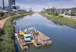 Brazylia. Usunęli z rzeki 30 tys. ton śmieci, dzięki czemu natura znów odżyła