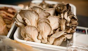Boczniaki. Wyjątkowe grzyby, które możesz uprawiać nawet we własnym domu
