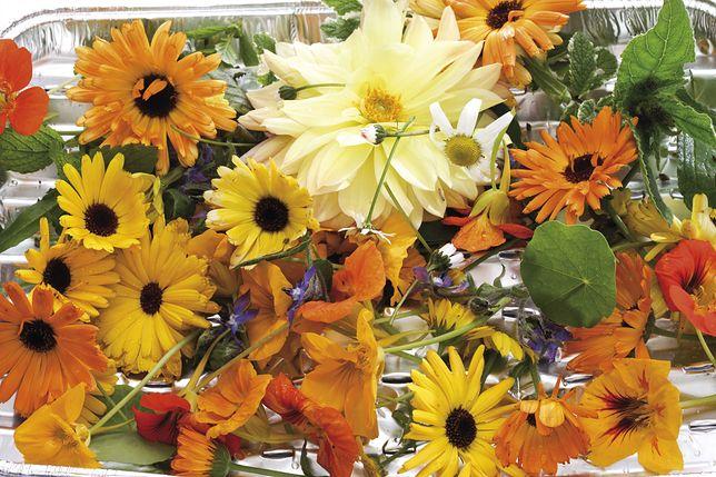 W kuchni można wykorzystać około 80 gatunków kwiatów