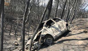 Tak wygląda Grecja po pożarach: ludzie winią Merkel, premiera-ateistę i podpalaczy