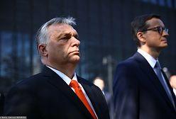 Media: Orban inwigiluje dziennikarzy. Czy Polska też korzysta z Pegasusa?