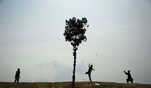 Apel przywódcy afgańskich talibów: sadźcie drzewa