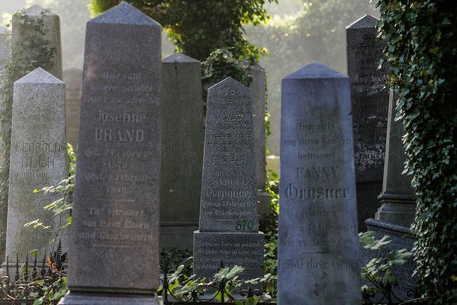 Bielsko-Biała. Po niedawnej dewastacji cmentarza żydowskiego miasto zorganizuje lekcje o historii miasta i tolerancji.