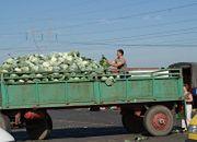 W Broniszach bogata oferta towarów, handel niewielki