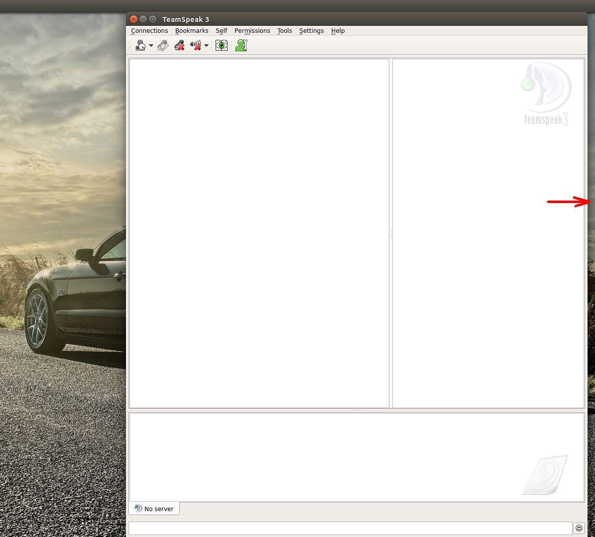 Piekło perfekcjonisty — ustalanie domyślnej pozycji okien w Ubuntu - Team Speak 3