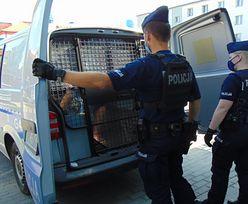 Małopolskie. 24-latek śmiertelnie potrącił 61-latka i uciekł. Już wcześniej miał problemy z prawem