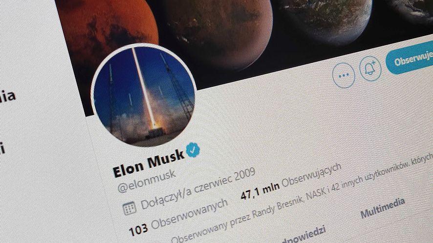 Elon Musk nie rozdaje Bitcoinów na Twitterze /fot. dobreprogramy