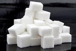 Susza uderza w produkcję cukru. Będzie droższy?