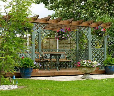 Pergole, kratki i trejaże - elementy architektury ogrodowej