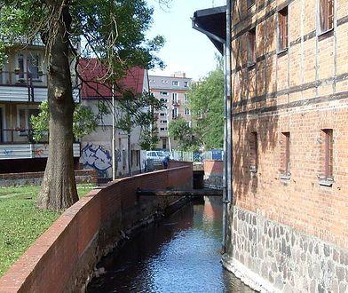 Rzeka Niezdobna płynie przez centrum Szczecinka