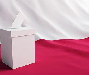 E-głosowanie szansą na wyższą frekwencję. Na system informatyczny potrzeba 30-50 mln zł