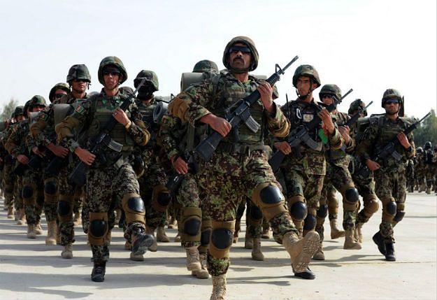 Żołnierze afgańskiej armii