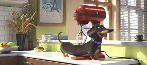 """""""Sekretne życie zwierzaków domowych"""" fot. UIP"""