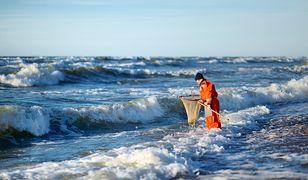 Znajdź na plaży drobinki bałtyckiego złota. Podpowiadamy, gdzie szukać