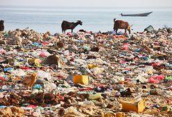 Śmieci w oceanach. Toniemy w plastiku