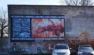 Oleśnica. Dość prezentowania drastycznych zdjęć aborcji? Radni zagłosowali za zakazem