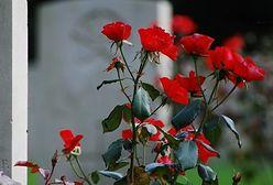 Dlaczego branża pogrzebowa traci?
