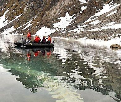 Pod wodą znaleziono szczątki wieloryba