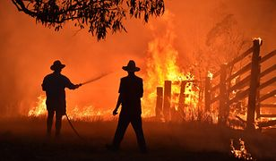 Australia. Przerażające obrazy z pożarów zmieniają poglądy obywateli w sprawie zmian klimatycznych.