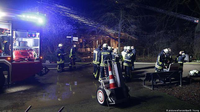 Niemcy. Pożar w zoo w Krefeld. 30 małp spłonęło żywcem