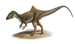 Dinozaury też miały garby