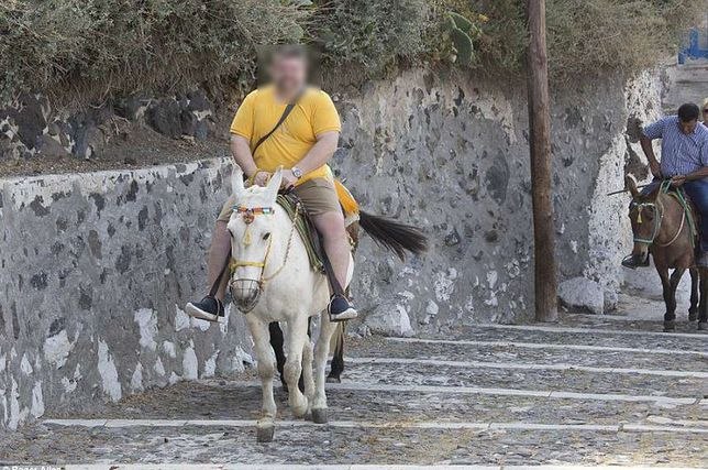 Turyści okaleczają osły