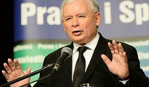 Łukasz Warzecha o rządach PiS: żadna dyktatura nie nadchodzi