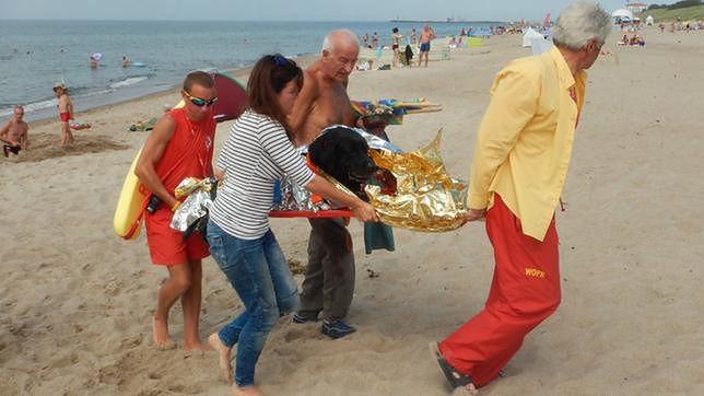 Niezwykła interwencja ratowników na plaży. Uratowali psa, który miał zawał