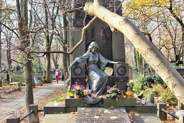 """Są pieniądze na renowacje powązkowskich grobów. """"Prace ruszą jeszcze w 2015 roku"""""""